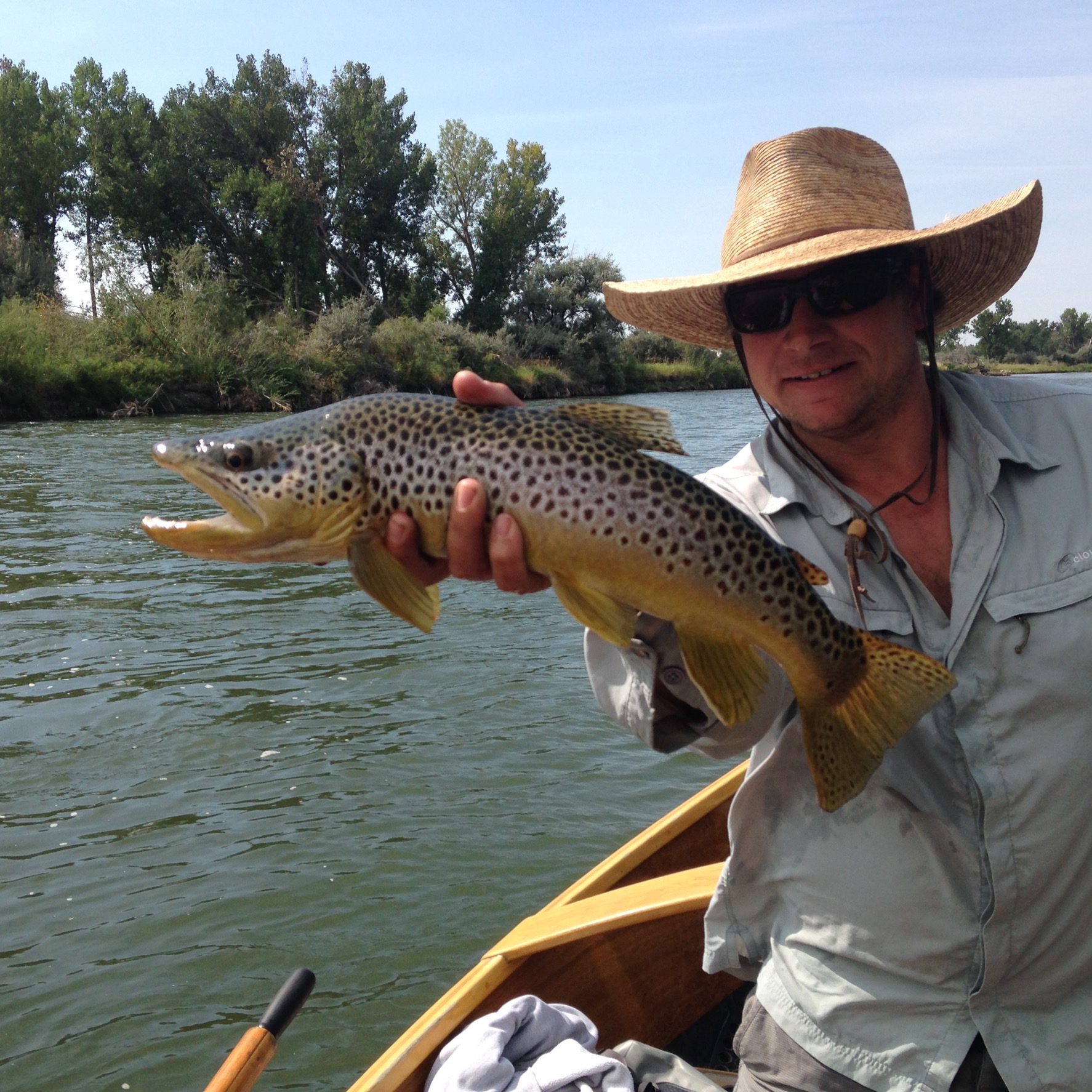 Tyler Steele Guide Service Big Horn River Brown Trout